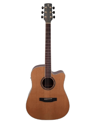 Timberidge TRC-4-NST Cedar Acoustic Guitar